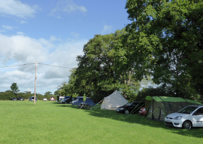 Pitch and Canvas | Glamping and Camping in Cheshire | Picture of busy campsite
